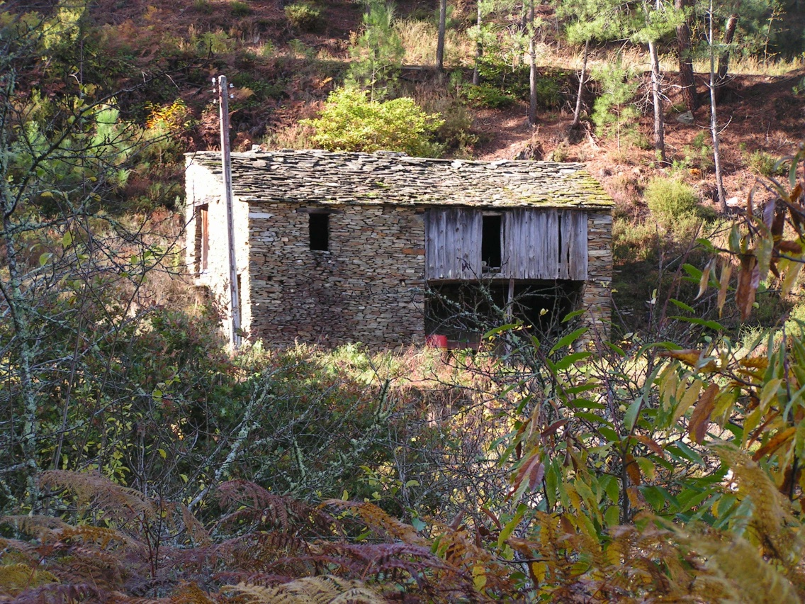 Storage house on the quinta at the time of purchase