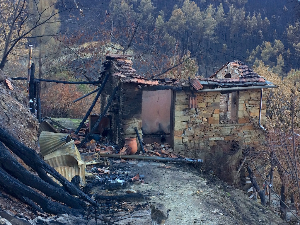 The wee house and kitchen at Quinta do Vale after the fires of October 2017