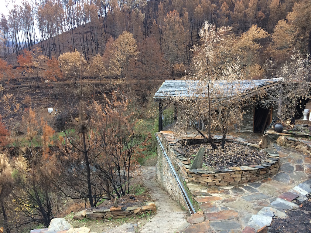 Quinta do Vale after the fires of October 2017