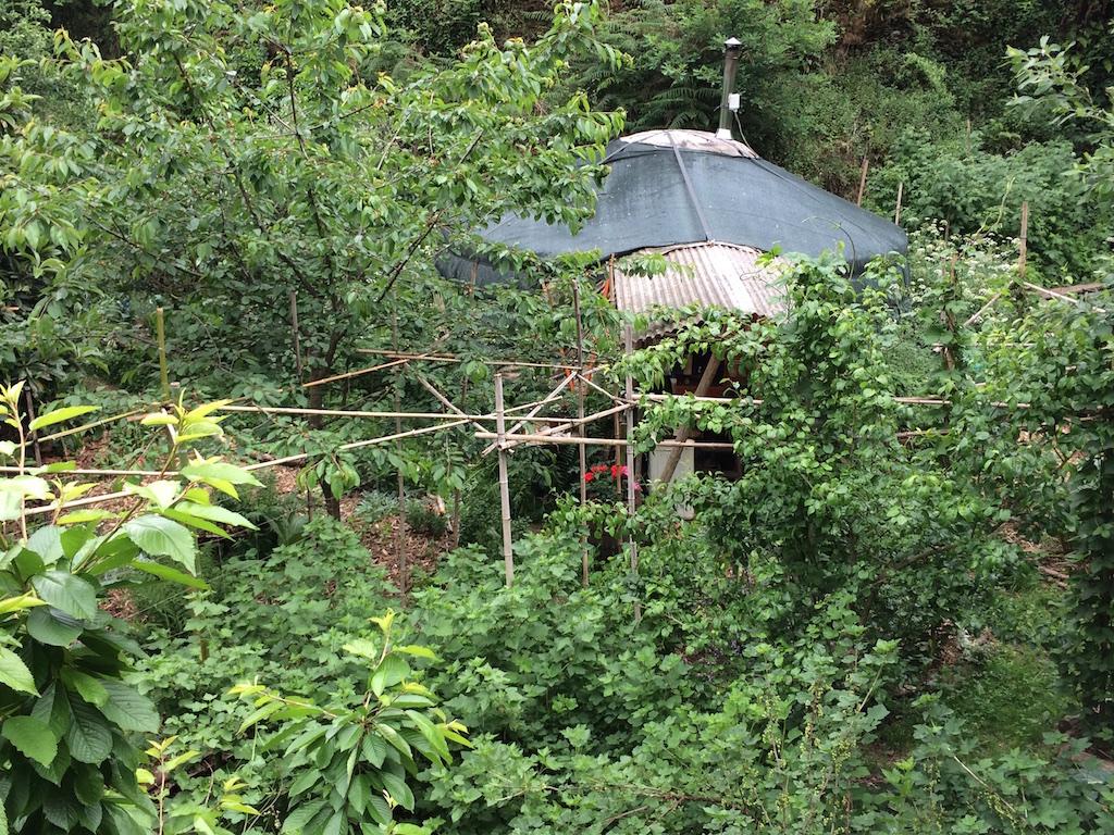 Yurt gardens