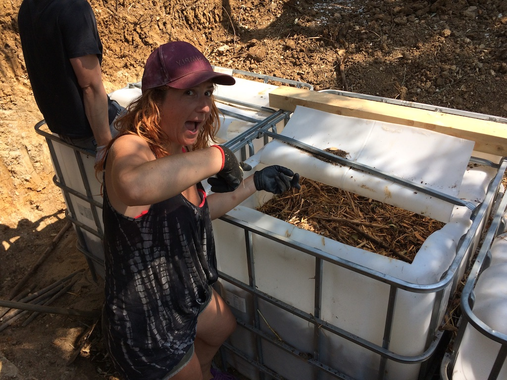 Filling worm tanks at a vermicomposting toilet workshop at Terra Alta, Sintra