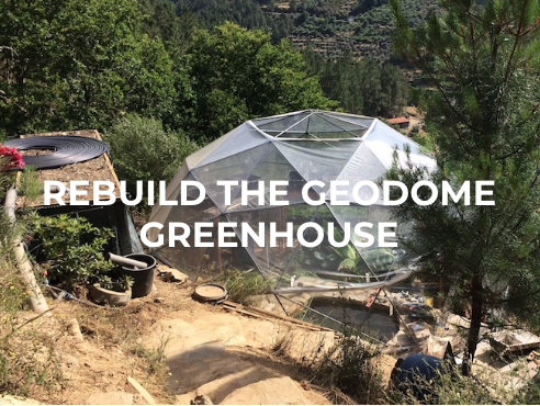 Rebuild the geodome greenhouse