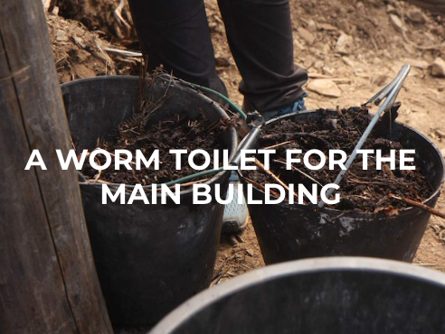 A worm toilet for the main building